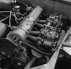 1956 Eleven